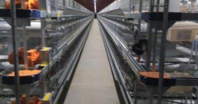В Пензенской области открылась птицефабрика