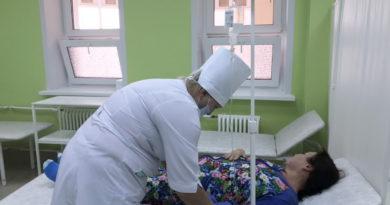 В Пензенской области зафиксирован завозной случай клещевого энцефалита