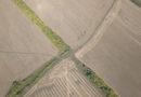 Пензенская область наращивает экспорт сельхозпродукции