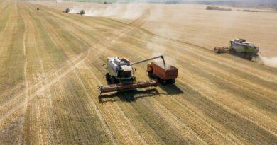 В Пензенской области намолотили 2,1 млн тонн зерна